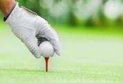 3-1-2014-golf
