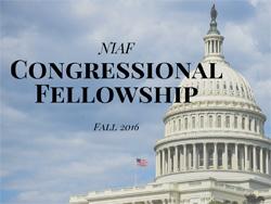 Congressional-Fellowship